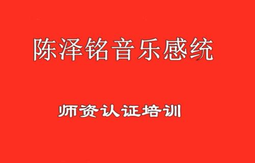 音乐感统师资认证培训(网络)