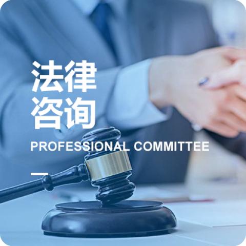 法律咨询专业委员会