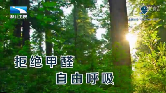 东方神盾-湖北卫视广告片